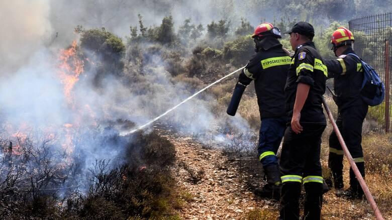 Υψηλός κίνδυνος πυρκαγιάς σήμερα για το Ν. Πέλλας - Ανακοίνωση της Πυροσβεστικής Υπηρεσίας image.